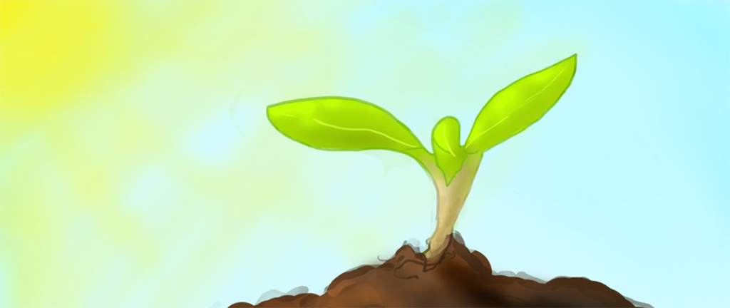 Project: Seed of Hope